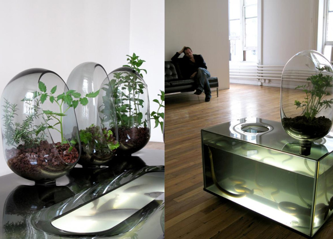 Un acuario diferente ecolgico y autosuficiente - Peceras para casa ...