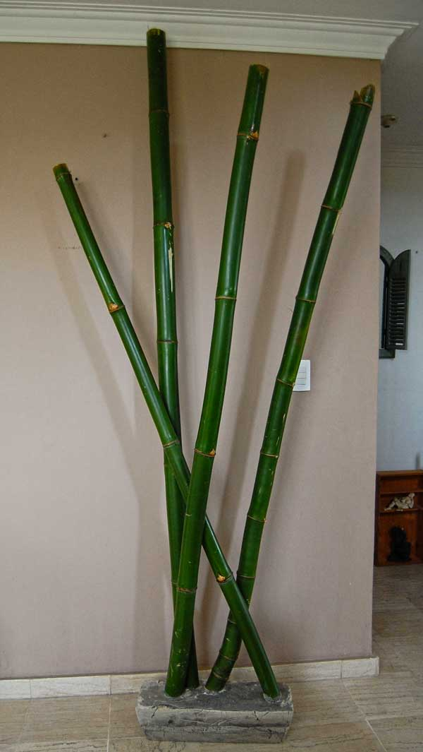 El dintel de la ventana for Bambu seco para decoracion