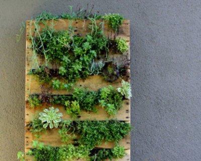 cmo utilizar los palets como maceteros o jardineras - Jardineras Con Palets
