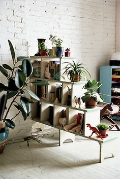 decoracin con plantas de interior